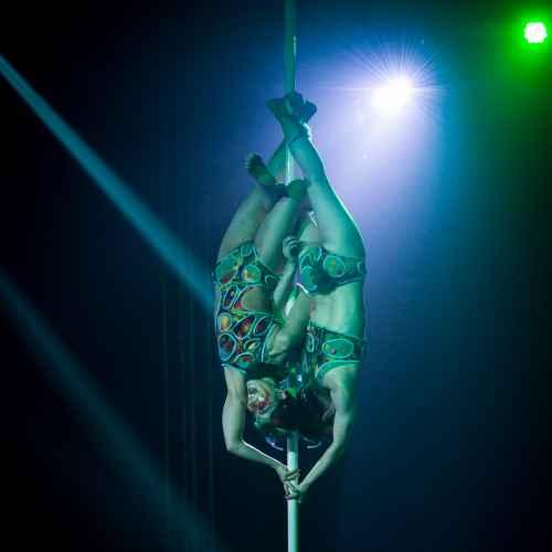 pole art italy 2016 double elite 35
