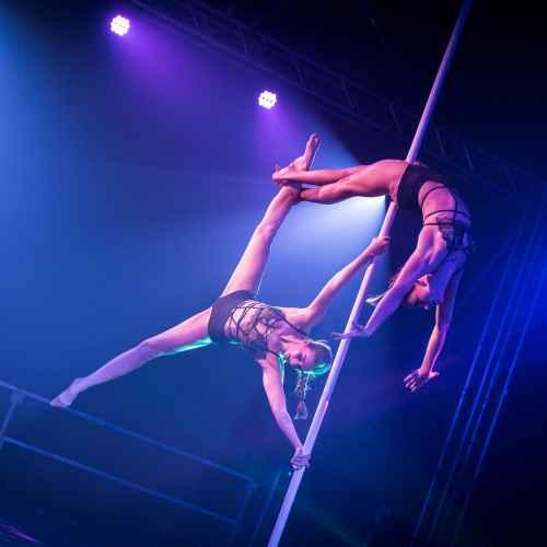 pole art italy 2016 double elite 22