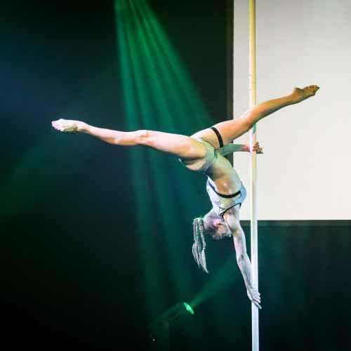 pole art italy 2016 women elite 95