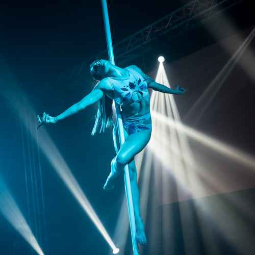 pole art italy 2016 women elite 85