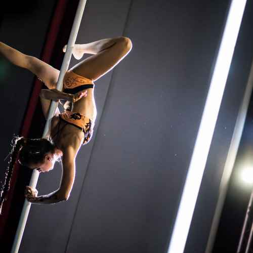 Pole art italy 2015 donne 56