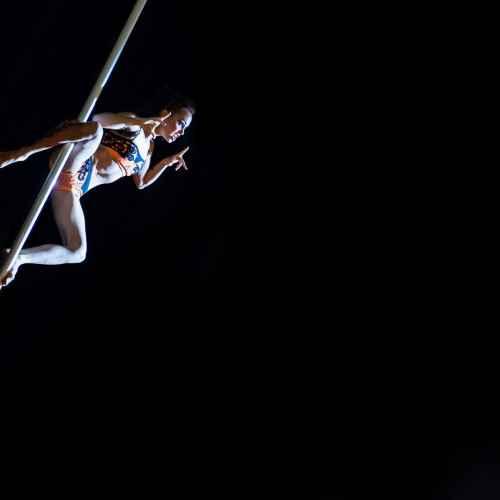 Pole art italy 2015 donne 55