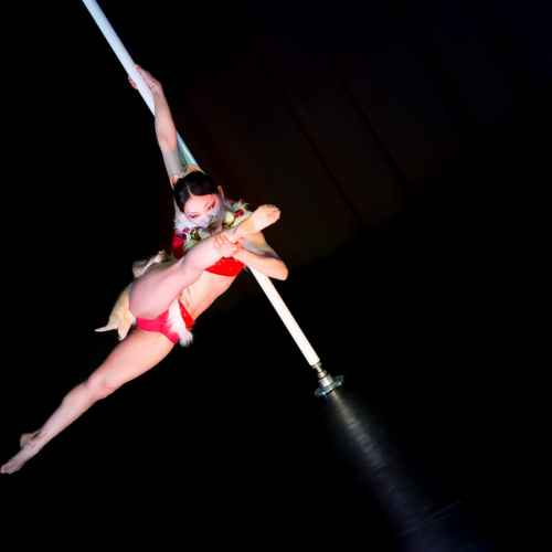 Pole art italy 2015 donne 14