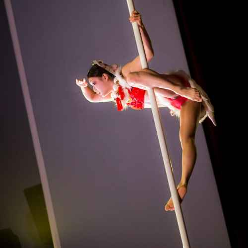 Pole art italy 2015 donne 10