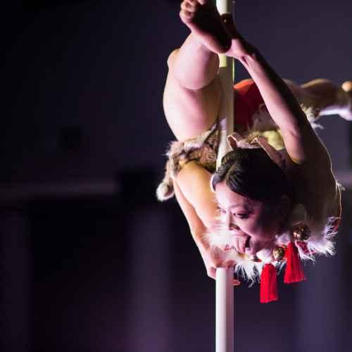 Pole art italy 2015 donne 07