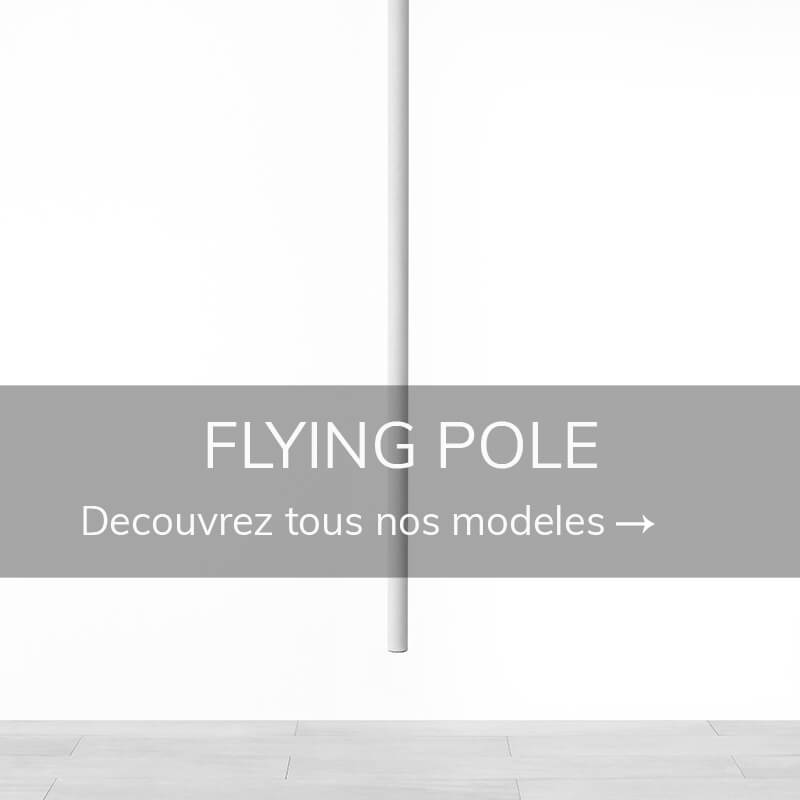 Discipline aerienne flying pole